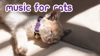 EXTRA-LONG Cat Music - 15 Hours Anti-anxiety Feline Therapy!