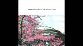 Echo & The Bunnymen - Never Stop