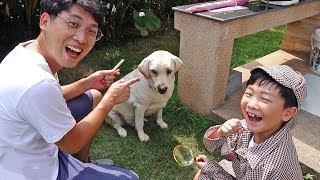 Lost Dog! Toys Activity with Pet Playground Pretend Play