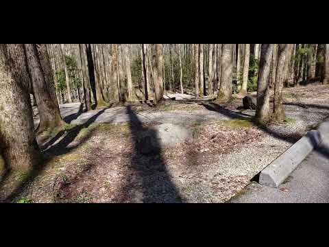 Cosby Campground, TN | The Dyrt