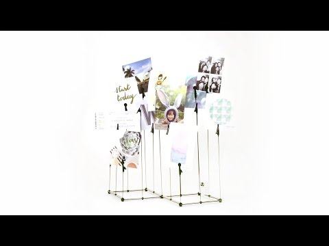 Video for Crowd Photo Display