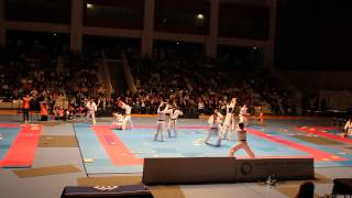 preview picture of video 'Taekwondo -Kukkiwon -Issy-les-Moulineaux - 2012 →N1'