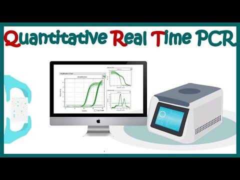 Quantitative real time PCR (qPCR)