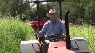 Malcolm Taylor: Rice weeds
