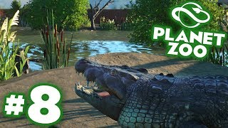 Baby Crocodiles And The Croc Paradise Complete!!! - Planet Zoo | Ep8 HD