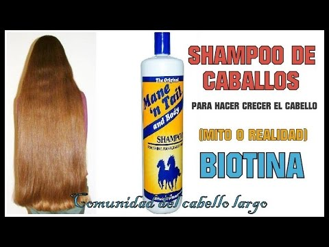 BIOTINA Y SHAMPOO DE CABALLO ¿Hace crecer el cabello?