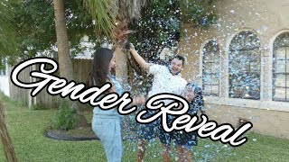 My MOM is PREGNANT! Gender Reveal - Boy or Girl?