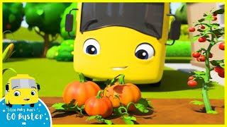 Buster Learns To Grow Vegetables At Home! | Go Buster | Baby Cartoons | Kids Videos | ABCs and 123s