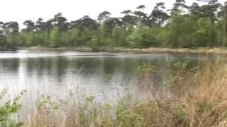 Oisterwijk kandidaat mooie plek van Nederland, 2006