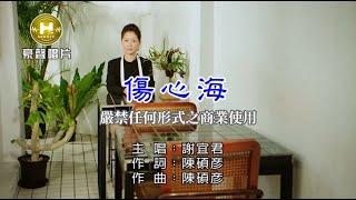 謝宜君-傷心海【KTV導唱字幕】1080p HD