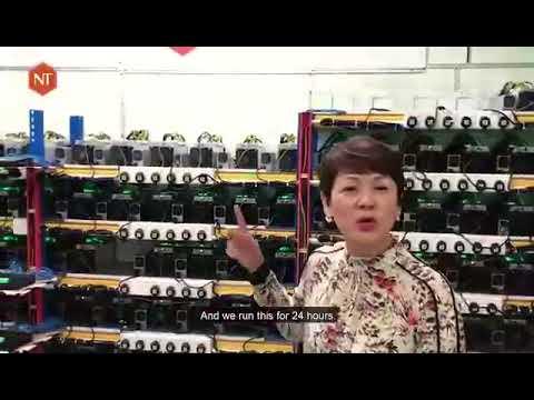 Bitcoin market cap reiškia