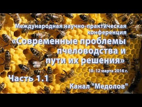 Часть 1.1  Приоритеты научного обеспечения отрасли пчеловодства. Зам.министра с/х Е.В. Громыко