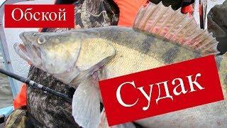 Рыболовные базы в томской новосибирской области