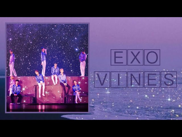 EXO vines that make you rethink your existence