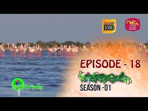 Sobadhara  | Season - 01 | Episode 18 | Sobadhara Rupavahini