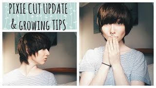 GROWING OUT A PIXIE CUT | Update & hair growing tips!
