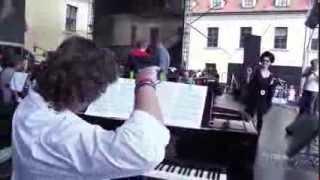 2013 06 29 Tribute to Petr Hapka - Lucie Bílá