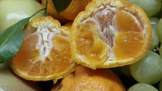 Super Sweet Page Mandarins!