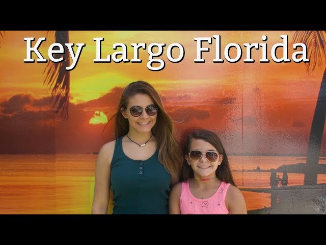 Snorkeling in Key Largo is beautiful! Are there sharks in the water?
