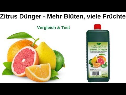 Zitrus Pflanzen richtig düngen - Flora Boost Profi Dünger für Zitronenbäume und Orangenbäume