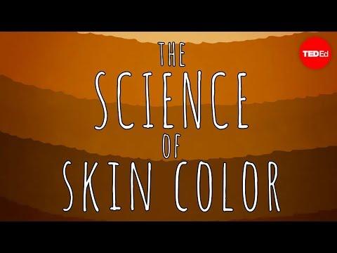 מדוע יש גוונים שונים לעור הגוף האנושי?
