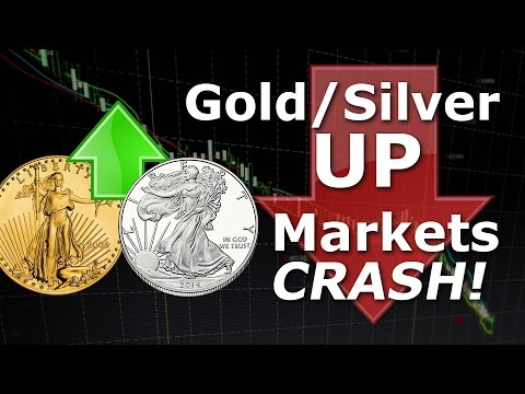 Metals Rise & Market Crash Only to Accelerate from Here!