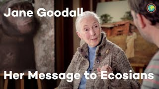 Ecosia interviews Dr. Jane Goodall
