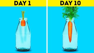 18 AWESOME HACKS TO GROW YOUR OWN PLANTS