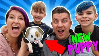 We Surprised The Kids With A New Puppy!