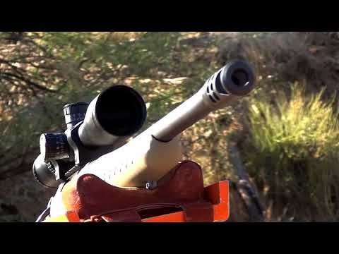 Ruger's American Ranch Rifle In .450 Bushmaster Has Muscle