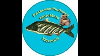На что клюет нельма в реальной рыбалке