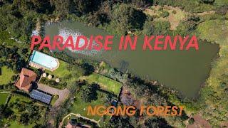 I found an hidden paradise at ngong forest (Dji mavic phantom 4 drone shots