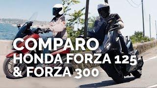 Comparo Honda Forza 125 &  Forza 300