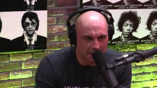 Joe Rogan & Henry Rollins Discuss Leading Unconventional Caree...