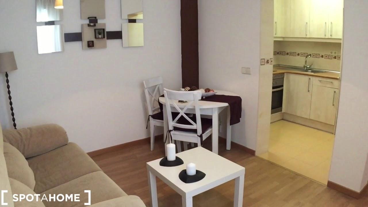 Cozy studio apartment for rent in Centro