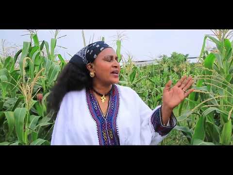Birtukuan Mebrahtu - Gere 2 (ገሬ 2) - New Ethiopian