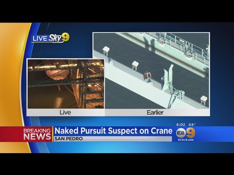 Man Leads Police On Chase To Port Of LA, Climbs Crane, Gets Naked
