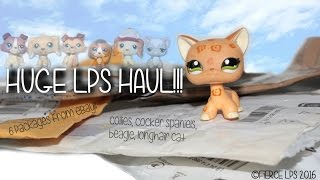 HUGE LPS HAUL!!! (6 PACKAGES FROM EBAY)