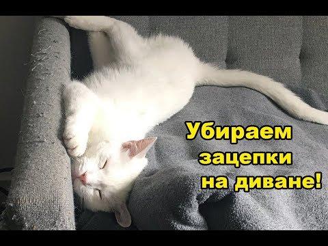 Как убрать зацепки на диване, мебели, зацепки от кошки