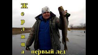 Отчеты о рыбалке во владимирской обл ноябрь 2020