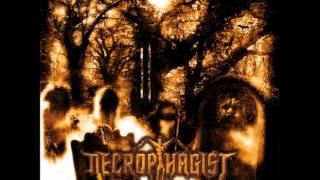 Necrophagist - The Stillborn One