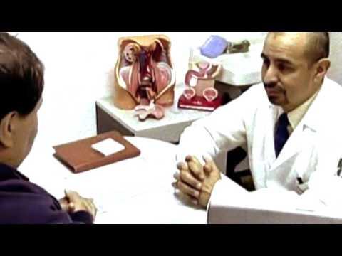El peso de la glándula prostática