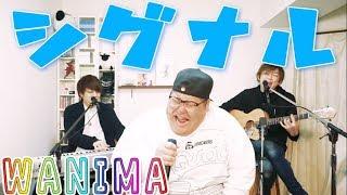 WANIMA/「シグナル」coveredbyLambSoars&恭一郎