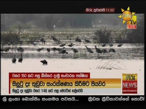 Hiru News 11.55 AM | 2020-05-27