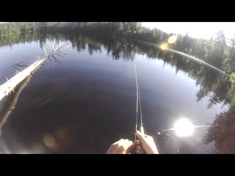 Trout Fishing Adirondack Pond