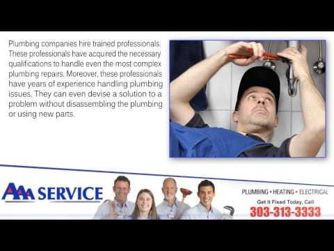 Why You Need to Hire a Professional for Plumbing Repairs - Denver plumbing repairs