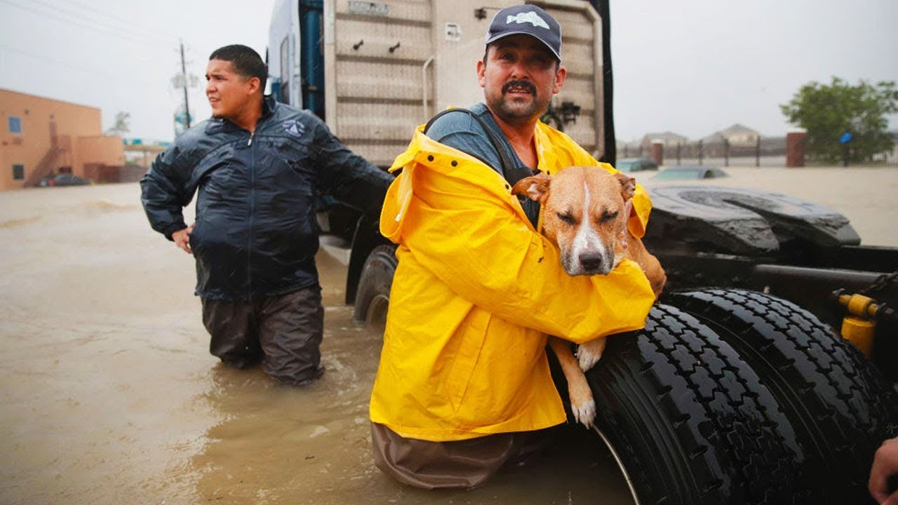 Hurricane Harvey's Devastation Continues thumbnail