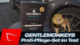 GentleMonkeys Gentlewipes aus die Höhle der Löwen im Test - Auto waschen ohne Wasser!