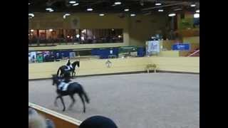 video of Blue Hors Zee Me Blue
