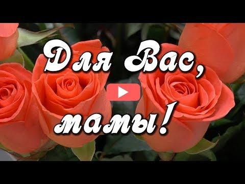 Весь Мир начинается с Мамы! С Днем МАТЕРИ! Поздравление для мам.